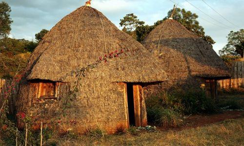 Zdjecie ETIOPIA / Dolina Omo / Wioska Dorze / Domki z nosem słonia