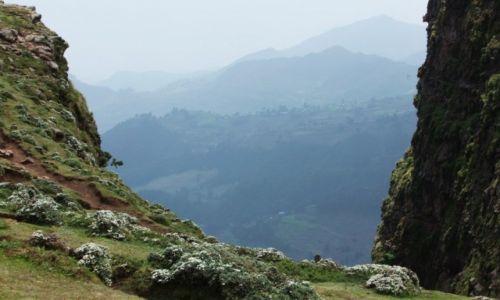 Zdjecie ETIOPIA / Amhara / Debra Sina / Góry Synaj, w języku amharskim Debra Sina