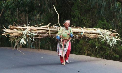 ETIOPIA / Addis Abeba / Wzgórze Entoto / Wytrwałość