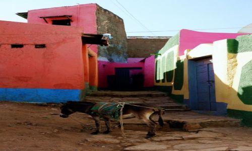 Zdjecie ETIOPIA / Harari / Harar / Zaparkowany