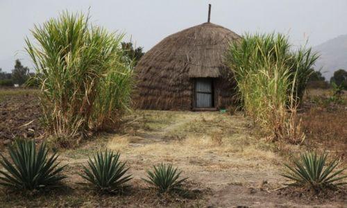 Zdjęcie ETIOPIA / Dolina Omo / Awassa / W nowym stylu