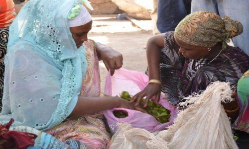 Zdjęcie ETIOPIA / Gdzieś po drodze  / po drodze / Zaproszenie na czat :-) Specyfik lekko odurzający