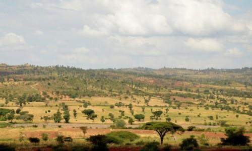 ETIOPIA / w drodze / w drodze / Krajobraz Afryki
