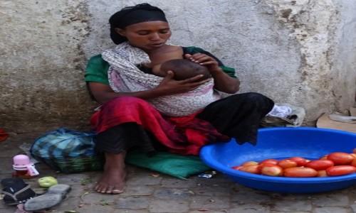 Zdjecie ETIOPIA / Wschodnia Etiopia / Harar / Macierzyństwo