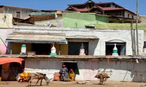 Zdjecie ETIOPIA / Prowincja Hareri / Harar / Kilka scenek z Hararu