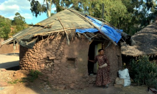 Zdjęcie ETIOPIA / Prowincja Hareri / Harar / Kilka scenek z Hararu