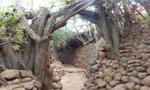 ETIOPIA / DOLINA OMO / Meczeke / Uliczka w wiosce Meczeke