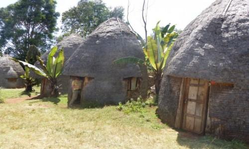 Zdjęcie ETIOPIA / DOLINA OMO / Dorze / Chaty w wiosce Dorze