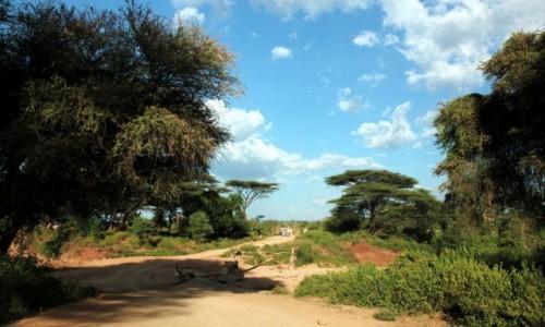 Zdjęcie ETIOPIA / Dolina Omo / Turmi / Droga