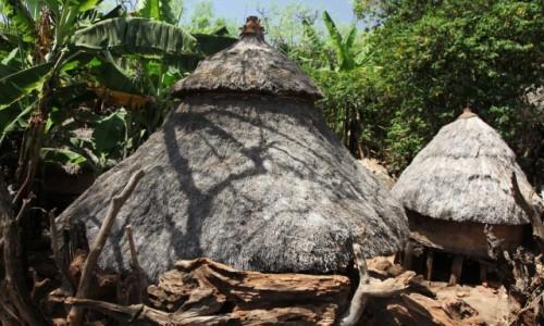 Zdjęcie ETIOPIA / Region Narodów, Narodowości i Ludów Południa / Konso / Niezwykła wioska