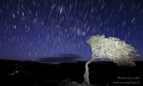 Zdjecie ETIOPIA / Góry Semien / Góry Semien / Spadające gwiazdy