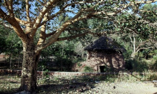 Zdjęcie ETIOPIA /  Amhara / Lalibela / W cieniu