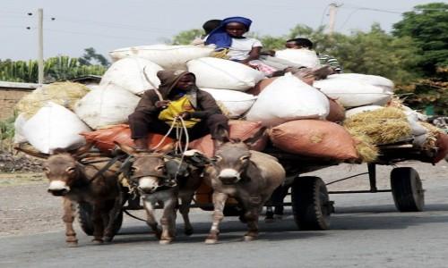 ETIOPIA / Dolina Omo / W drodze / Transport
