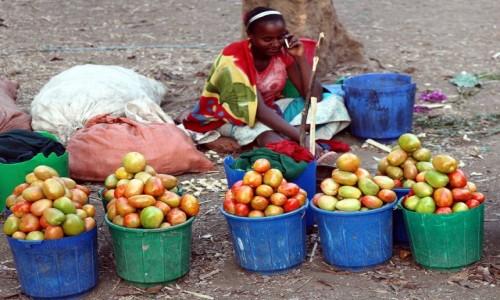ETIOPIA / Dolina Omo /  W drodze do wioski Dorze  / Sprzedająca pomidory