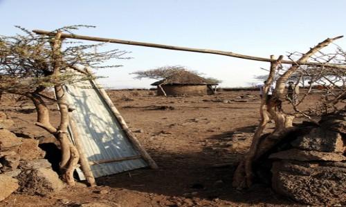 Zdjecie ETIOPIA / Dolina Omo / Wioska plemienia Oromo / Brama