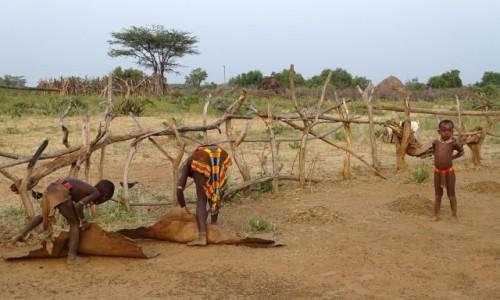 Zdjęcie ETIOPIA / Dolina Omo / osada Hamerów / Sprzątanie obejścia