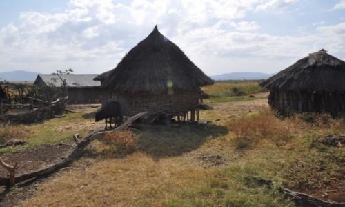 Zdjecie ETIOPIA / Dolina Omo / Okolice Turmi / Wiejska archite