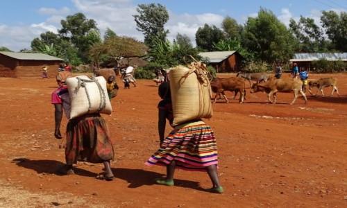 Zdjecie ETIOPIA / Południe / gdzieś po drodze / Być kobietą