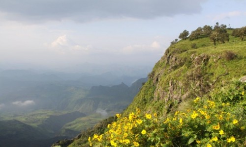 Zdjecie ETIOPIA / Simien Mountains / Simien Mountain / W górach Simien