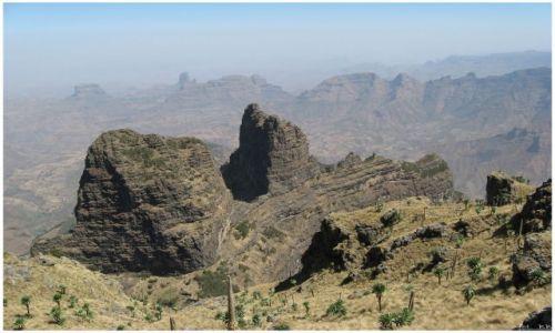 Zdjecie ETIOPIA / Siemen Mts / Siemen Mts / Siemen Mts National Park