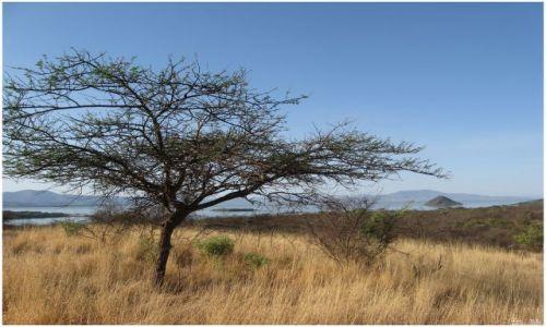 Zdjęcie ETIOPIA / Etiopia południowa / Nechisar National Park / Widok na jezioro Chamo