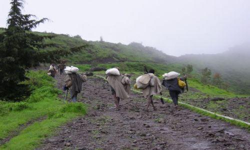 Zdjecie ETIOPIA / brak / etiopia / powrót do domu