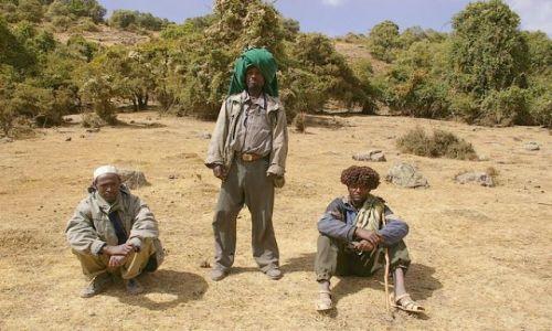 Zdjecie ETIOPIA / Północna Etiopia / Siemen Mountains / Pasterski żywot