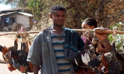 Zdjecie ETIOPIA / brak / Etiopia / Moja Etiopia 7