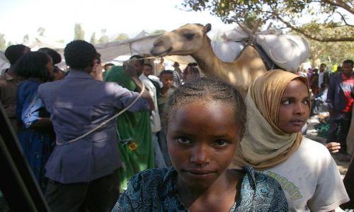 Zdjecie ETIOPIA / Północna - środkowa Etiopia / gdzieś blisko Addis Abbeby / Wyłączona z misz-maszu