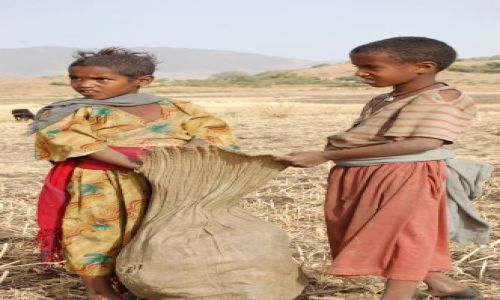 Zdjecie ETIOPIA / brak / Gonder / Moja Etiopia 12