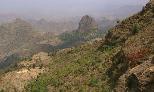 Zdjecie ETIOPIA / Północna Etiopia / Siemen Mountains / Góry Siemen piękne są