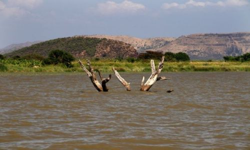 ETIOPIA / Arba Minch / Jezioro Chamo / ARBA MINCH
