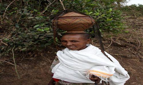 Zdjęcie ETIOPIA / Amhara / BAHIR DAR / BAHIR DAR