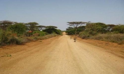 Zdjecie ETIOPIA / brak / okolice Turmi / Droga z Turmi do Weyto