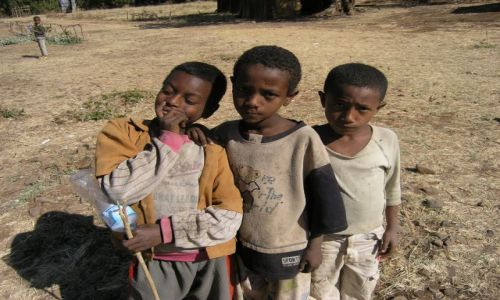 Zdjecie ETIOPIA / brak / Bahir Daru / Przyjaciele