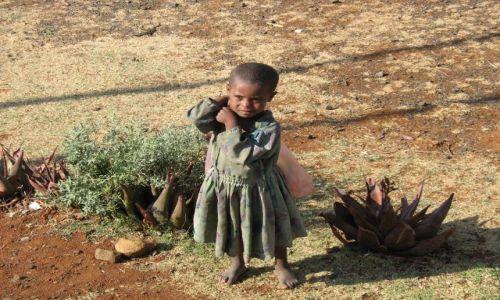 Zdjęcie ETIOPIA / brak / Lalibella / Dziewczynka