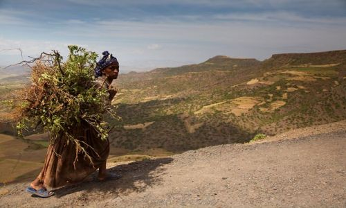 Zdjecie ETIOPIA / brak / Lalibela / Droga do domu