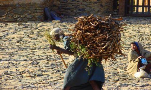 Zdjęcie ETIOPIA / Gandor / Gandor / Transport