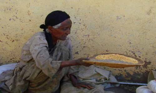 Zdjęcie ETIOPIA / Gandor / Gandor / Sprzedaje