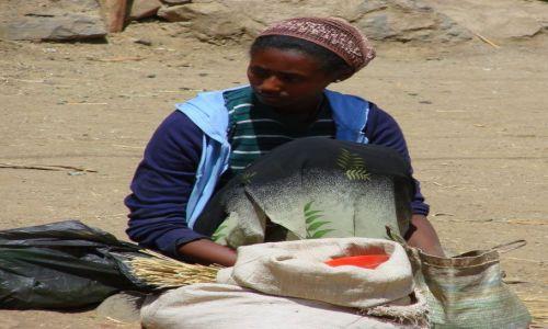 Zdjecie ETIOPIA / Gandor / Gandor / sprzedaje