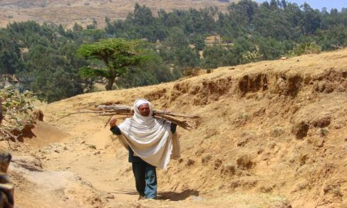 Zdjęcie ETIOPIA / Debork / Debork / Spacer
