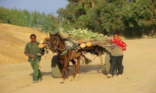 Zdjęcie ETIOPIA / Deborg / Deborg / Transport