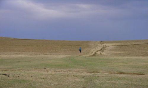 Zdjęcie ETIOPIA / Debarg / Debarg / Samotny  w  polu
