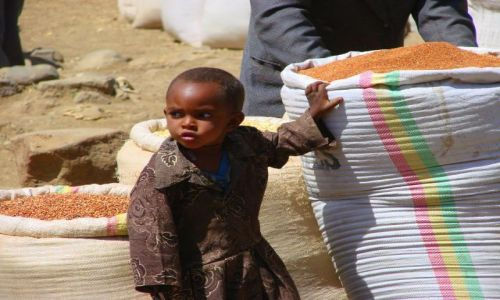 Zdjęcie ETIOPIA / Debark / Debark / Temu  starczy