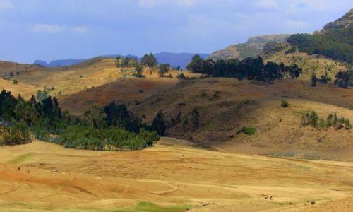 Zdjęcie ETIOPIA / Debark / Debark / Góry