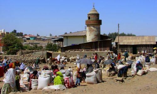 Zdjęcie ETIOPIA / Debark / Debark / Debark