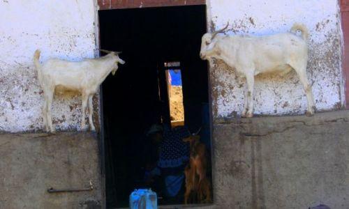 Zdjęcie ETIOPIA / Debork / Debork / Straż