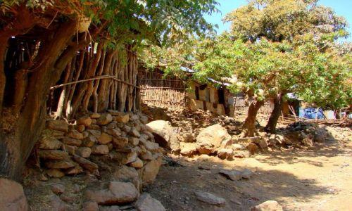 Zdjęcie ETIOPIA / Abuna  Jomata / Abuna  Jomata / Zabudowania