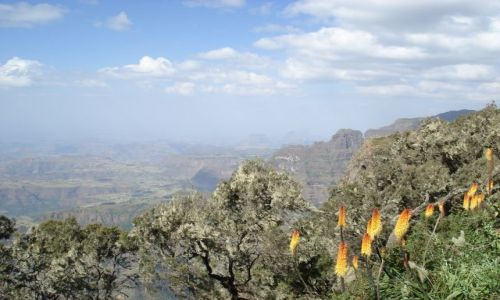 Zdjecie ETIOPIA / Amhara / Park Narodowy Simien / Góry Simien