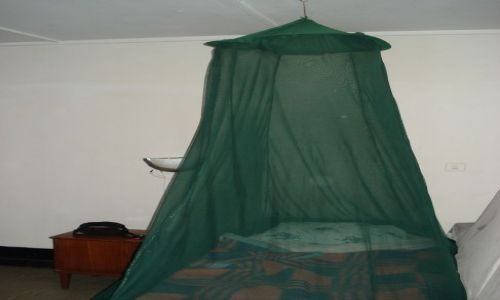 Zdjecie ETIOPIA / Amhara / Bahar Dar / Bahar Dar / Zabezpieczenie przed komarami